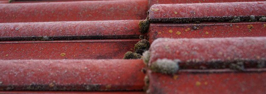 3 choses à savoir pour garder sa toiture en bon état